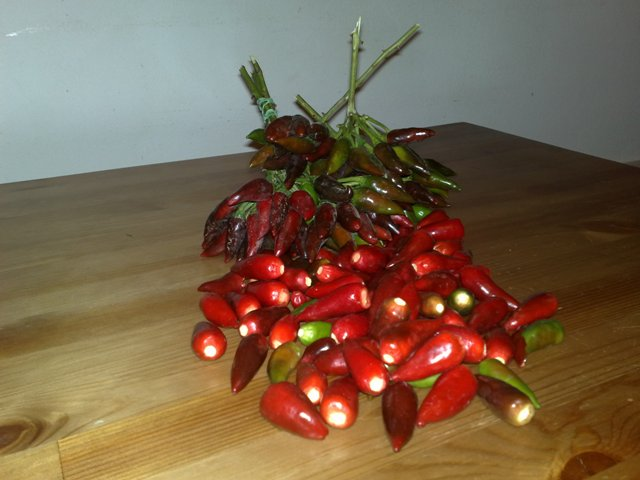 chili pepper preserves recipe  and the back